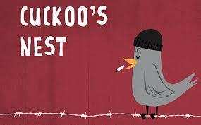 Cuckoo1