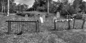 Harrow Bone Yard